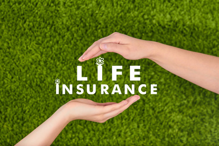 Michigan life insurance rates